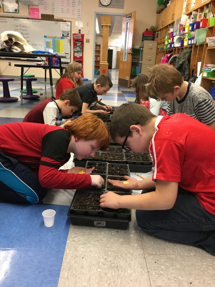 Service Learning planting in grade 2